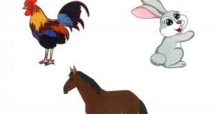 حل درس أوشي الأرنب لغة عربية للصف الاول الفصل الاول