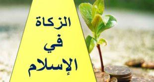 حل درس الزكاة في الإسلام تربية اسلامية للصف العاشر الفصل الدراسي الاول