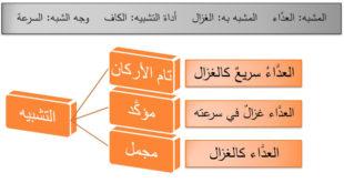 حل درس الاستعارة لغة عربية للصف العاشر الفصل الول