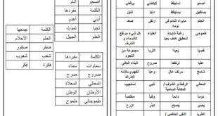 شرح قصيدة فكرة تبذرُ الحلم لغة عربية للصف الرابع الفصل الثاني