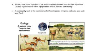 ملخص شاملة لمادة العلوم المتكاملة للصف السادس الفصل الثاني 2019-2020