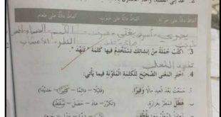 حل درس غابة العجائب للصف الثالث لغة عربية الفصل الثاني