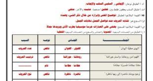 ورقة عمل (الطباق والجناس) لغة عربية للصف الثاني عشر الفصل الثاني