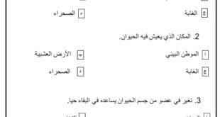أوراق عمل (مراجعة) في العلوم المتكاملة للصف الأول الفصل الثاني