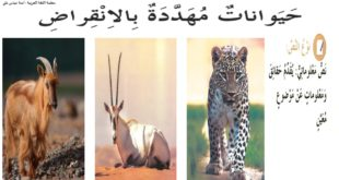 حل درس حيوانات مهددة بالانقراض لغة عربية للصف السابع الفصل الثاني