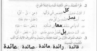 حل درس الفصول الاربعة لغة عربية للصف الثالث الفصل الثالث