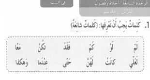 حل درس رحلة بيبو لغة عربية للصف الثالث الفصل الثالث