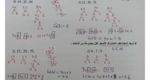 حلول الوحدة الاولى رياضيات للصف السادس الفصل الثالث