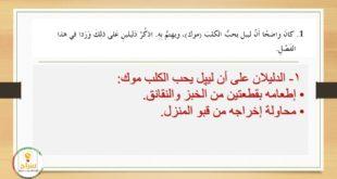 حل درس موك يتسبب بإحداث فوضى مع التلخيص احلام ليبل السعيدة لغة عربية للصف السادس الفصل الثالث