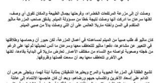 تلخيص رواية آن في المرتفعات الخضراء لغة عربية للصف الحادي عشر الفصل الثالث