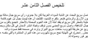 تلخيص الفصل الثامن عشر درس أمضِ من رواية ذئب اسمه طواف لغة عربية الصف الثامن الفصل الثالث