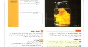 حل درس أنواع التفاعلات الكيميائية علوم للصف الثامن الفصل الاول